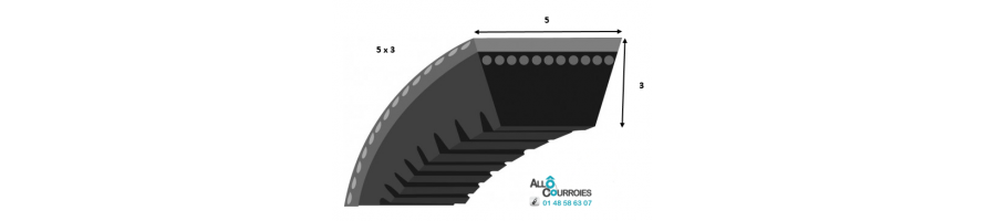 Courroie trapezoidale lisse PROFIL 5  (5x3mm)| Allocourroies.com