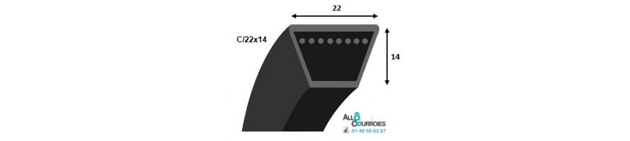 Courroie trapezoidale lisse PROFIL C (22x14mm) | Allocourroies.com