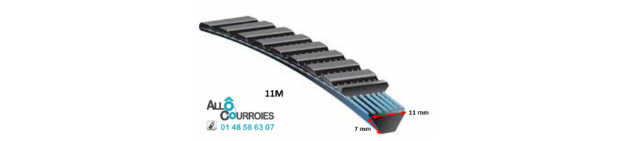 COURROIE TYPE BANFLEX POLYFLEX - 11 M (dim: 7x11mm)| Allocourroies.com