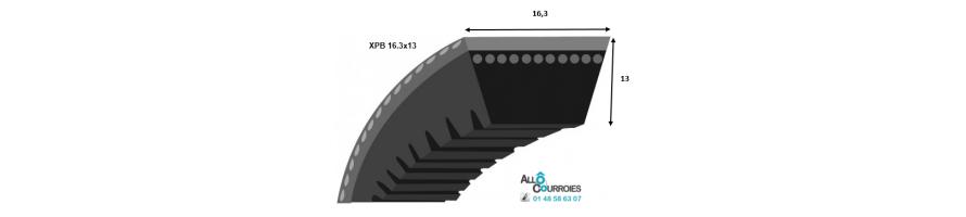 Profil XPB 16.3x13mm