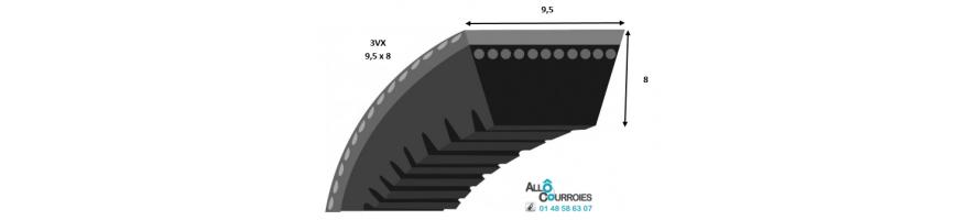 COURROIE TRAPÉZOÏDALE CRANTÉE 3VX (9x8 mm)| Allocourroies.com