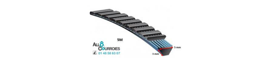 Courroie Type Banflex Polyflex - 5 M (dim:3x5mm) | Allocourroies.com