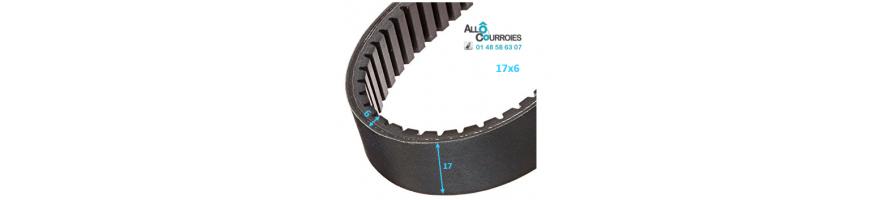Courroie de variateur 17x6 | Allocourroies.com