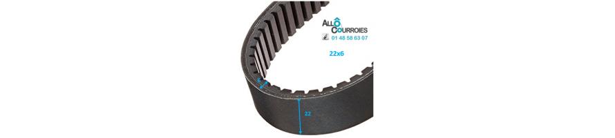 Courroie de variateur 22x6 | Allocourroies.com