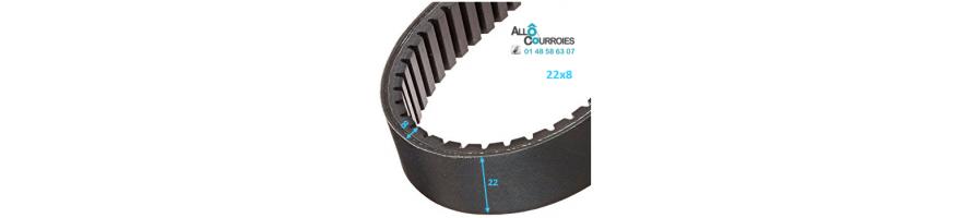 Courroie de variateur 22x8 | Allocourroies.com