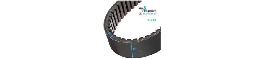 Courroie de variateur 37x10 | Allocourroies.com