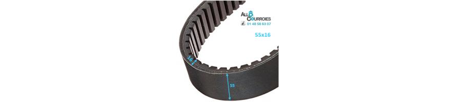 Courroie de variateur 55x16 | Allocourroies.com
