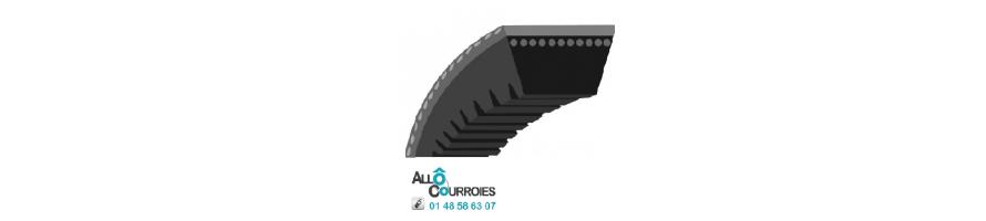 Vente de Courroie trapezoidale crantée |Allocourroies.com