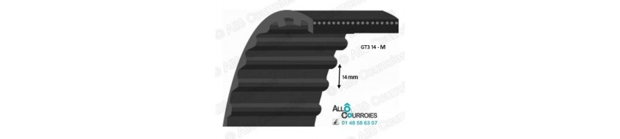 Courroie simple dentée renforcée GT Carbon (8MGT, 14MGT)| Allocourroies.com