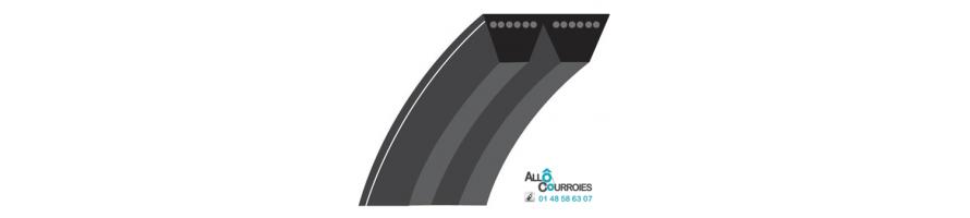 Courroie trapézoïdale Multibrins SPA 12.7x10 mm | Allocourroies.com