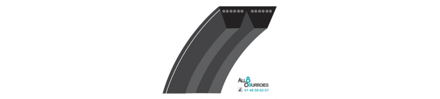 COURROIE TRAPEZOIDALE MULTIBRINS PROFIL 5V (15x13mm)| Allocourroies